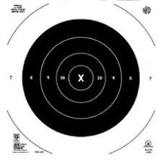 Hoppe's 9 Competition 50 Yard Pistol Target 20 Pack