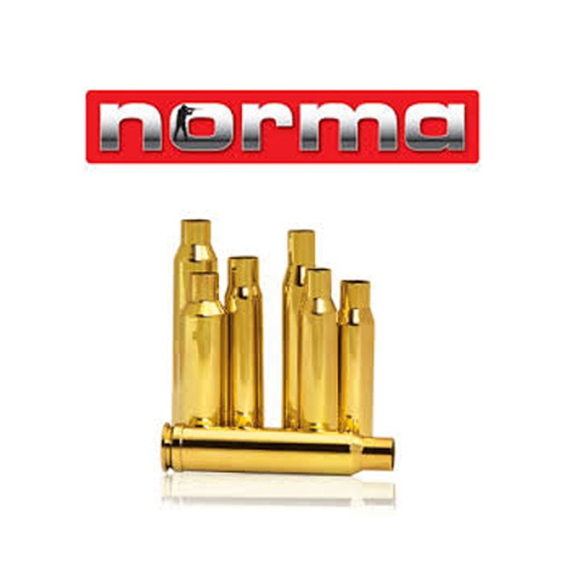 Norma 243 Win  100 Cases